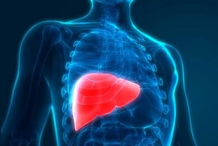 UKs liver cancer deaths rise significantly between 2007 and 2017